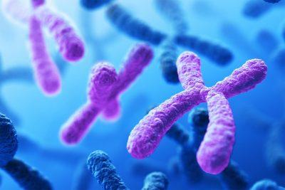 آزمایش غیر تهاجمی تشخیص ناهنجاری کروموزومی آزمایش غیر تهاجمی تشخیص ناهنجاری کروموزومی sequencingal 400x267 آزمايشگاه صفحه اصلي sequencingal 400x267