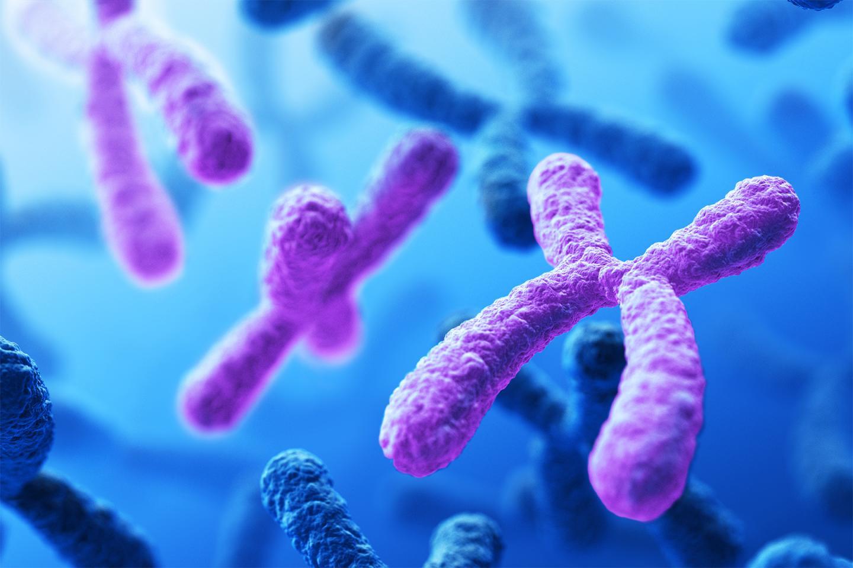 آزمایش غیر تهاجمی تشخیص ناهنجاری کروموزومی آزمایش غیر تهاجمی تشخیص ناهنجاری کروموزومی sequencingal آزمايشگاه صفحه اصلي sequencingal