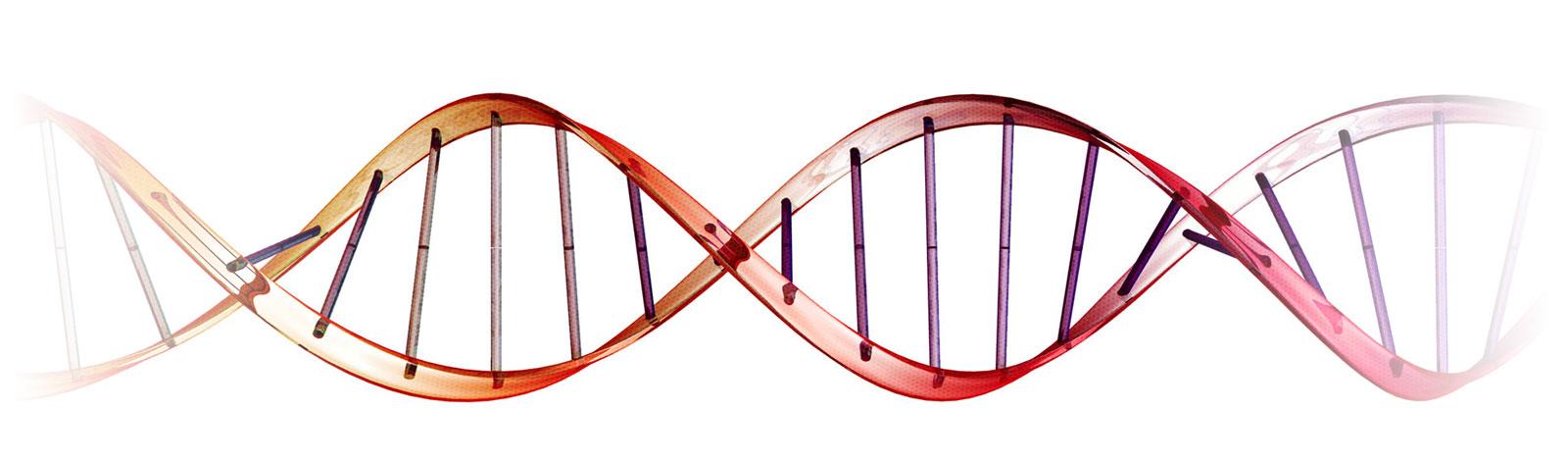 پکيج کامل تغذيه و سلامتي متناسب با ژنتيک شما bg 9