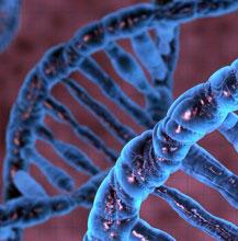 بخش بيوشيمي بخش بيوشيمي Biochemistry آزمايشگاه صفحه اصلي Biochemistry
