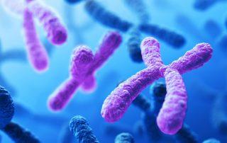 آزمایش غیر تهاجمی تشخیص ناهنجاری کروموزومی آزمایش غیر تهاجمی تشخیص ناهنجاری کروموزومی sequencingal 320x202 دانستنيهاي پزشکي دانستنيهاي پزشکي sequencingal 320x202